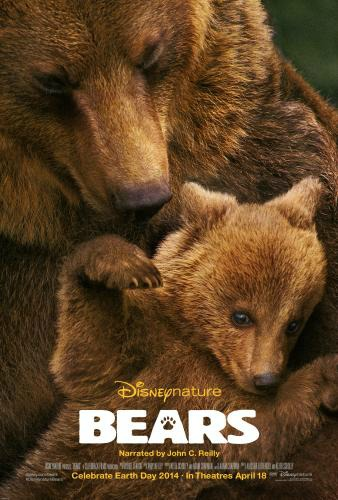 Bears Rumble into Theaters Today
