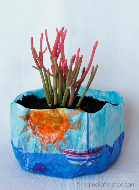 DIY Colorful Planter Using a Milk Jug