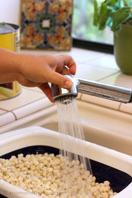 rinsing hominy to prepare pozole